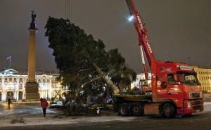 В Петербурге установили главную елку весом 10 тонн